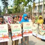 International Women Day observation 2012